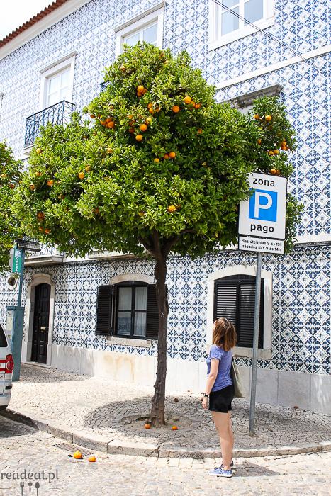 portugalskie pomarańcze