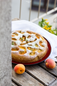 Apricot cake with olive oil and thyme